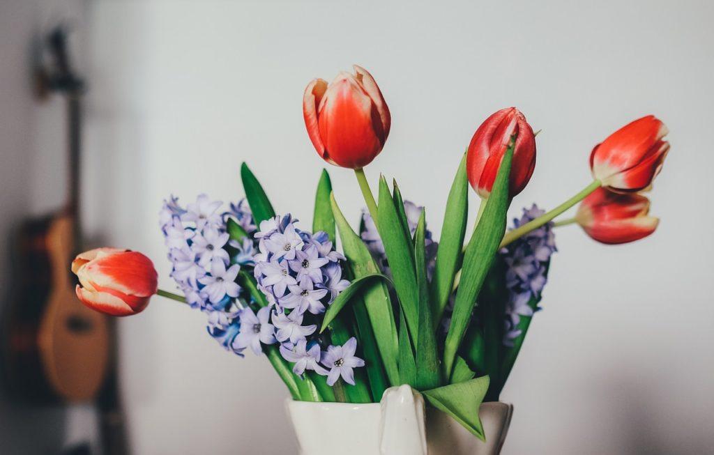 Tulpen als Deko