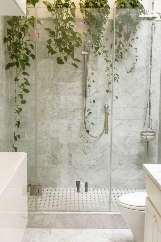 Badezimmerpflanzen03