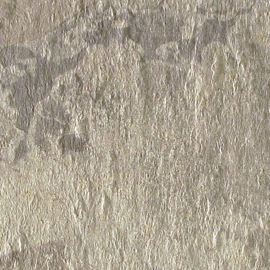PrimeCollection Nature Bodenfliese grigio 60x60 cm